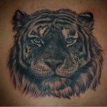 Stockholm_Tatuering_Tiger.jpg